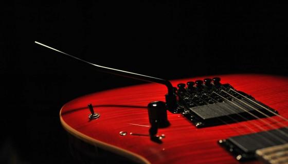 גיטרה, יניב זייד